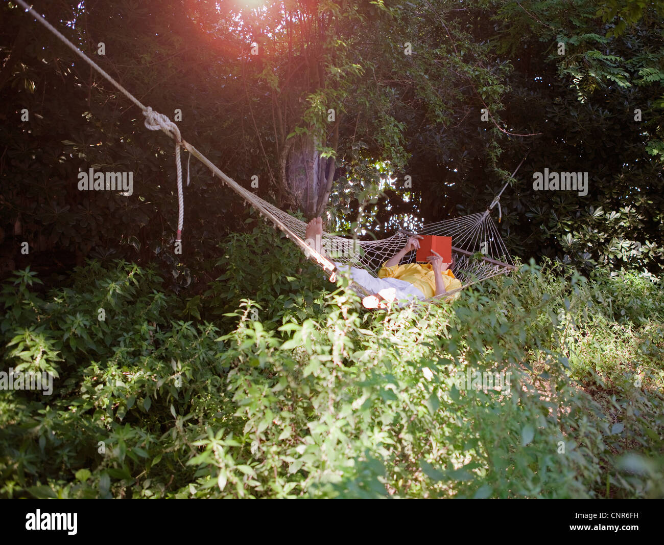 Man reading in hammock outdoors - Stock Image