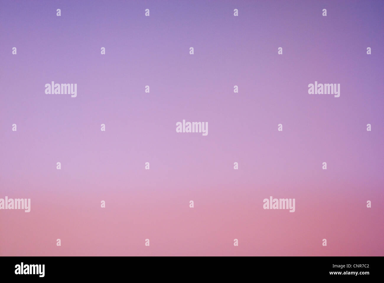 Pink and Lilac Sunset, Unfocused Background - Stock Image