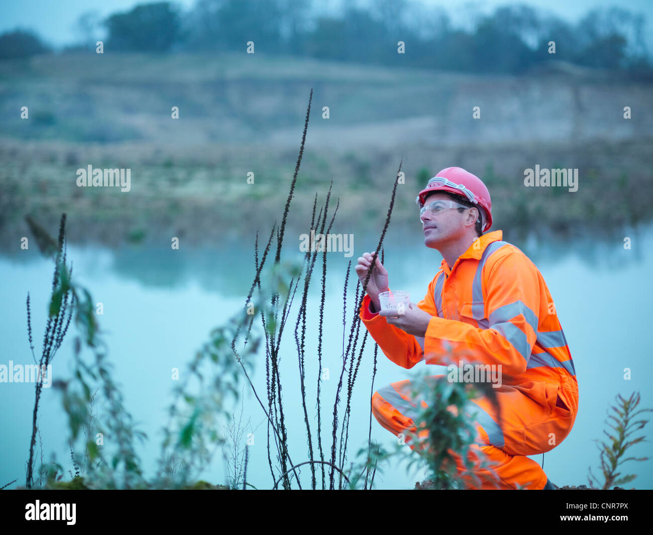 Worker examining plants in quarry - Stock Image