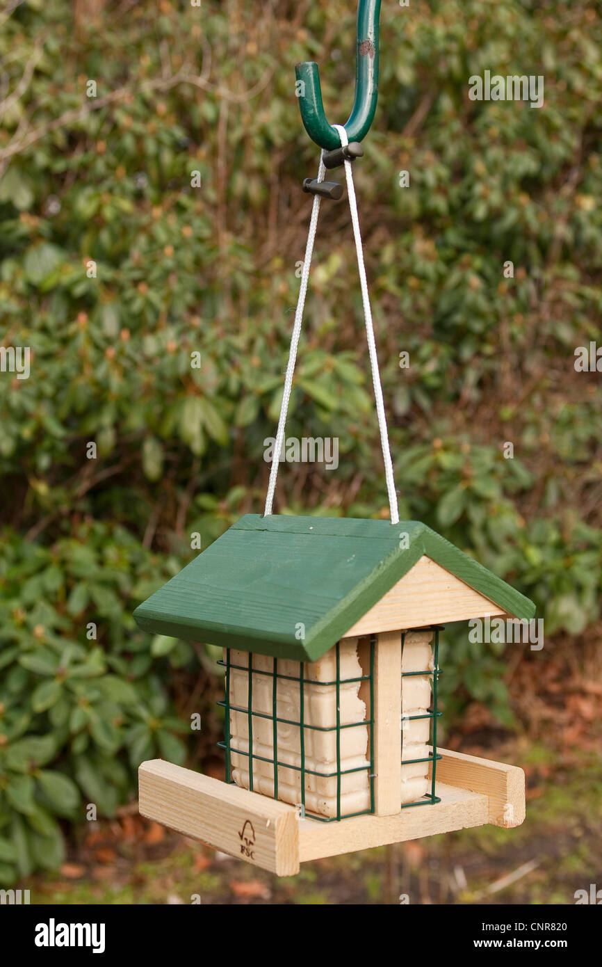bird feeder with suet - Stock Image