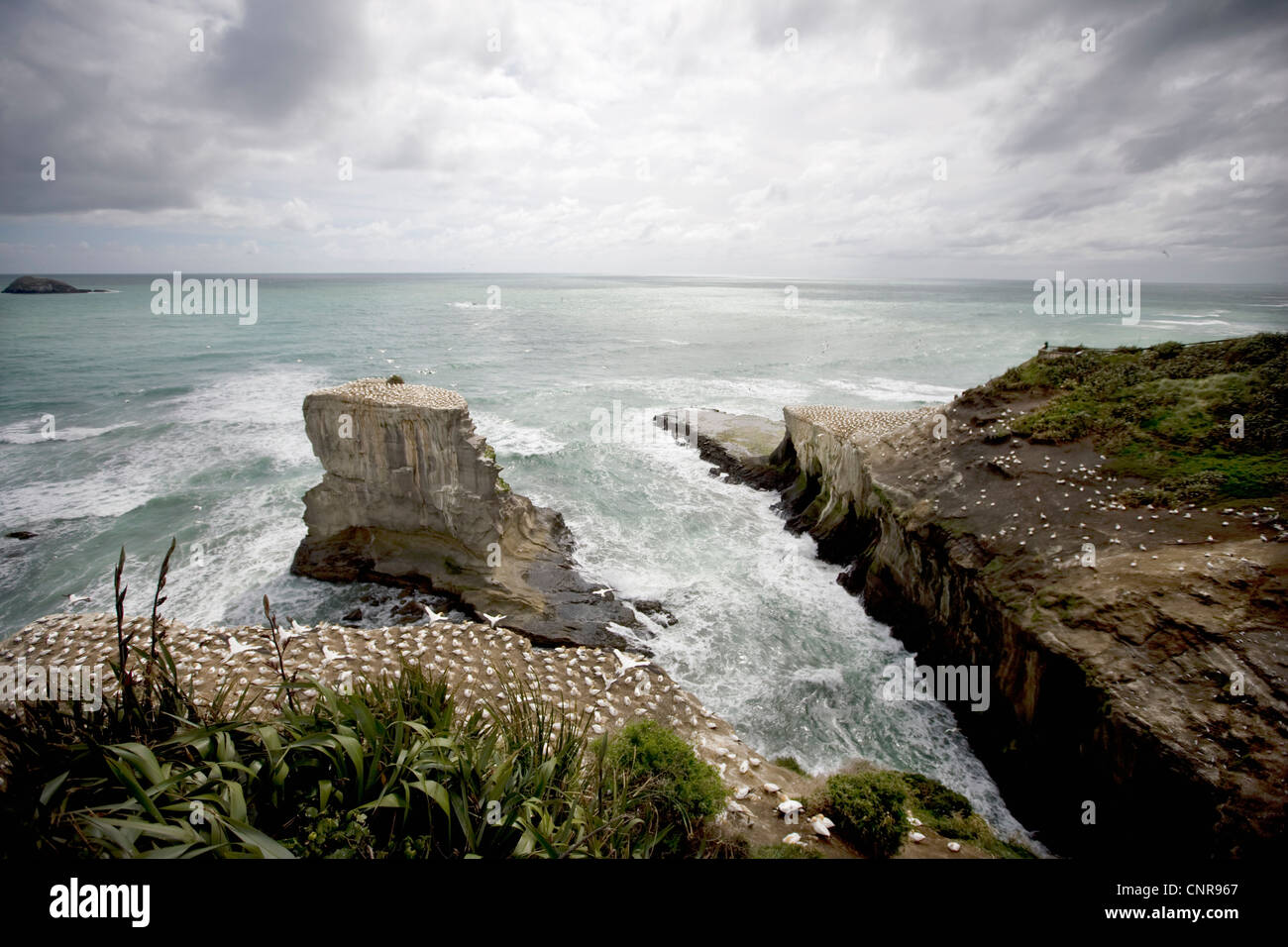 Craggy rocks jutting into ocean - Stock Image