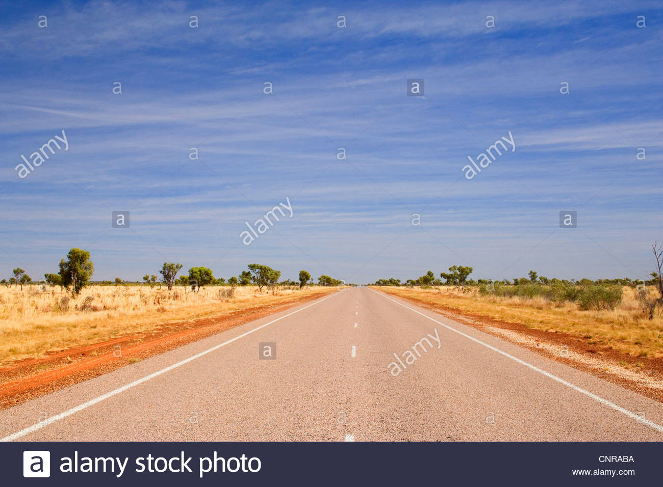 Road to nowhere - a perfectly straight bitumen road, which leads for hours and hours through dry bushland, in Western - Stock Image