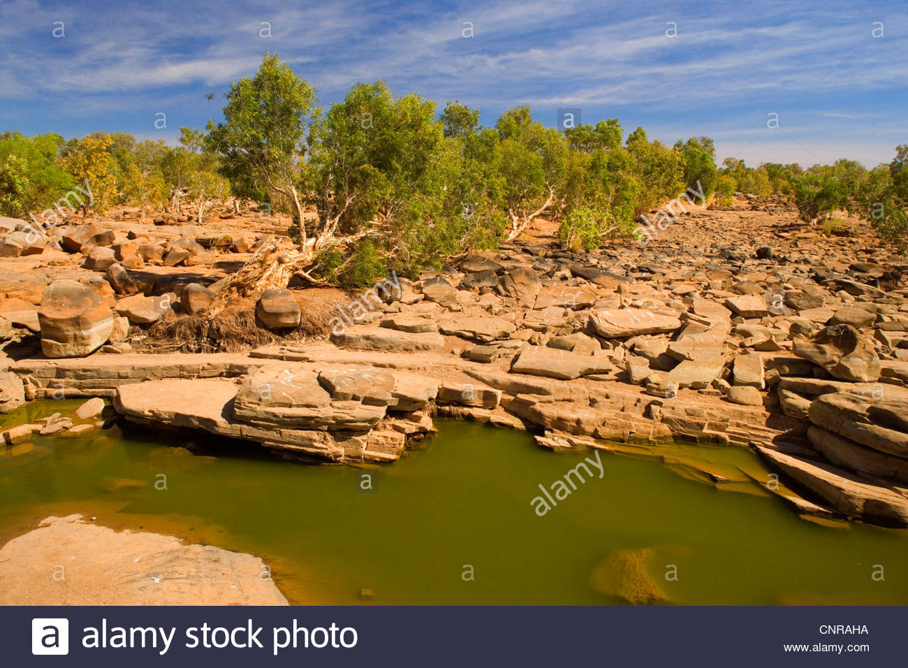 AustralienDrought - nearly completely dried out riverbed, which is evidence of drought , Australia, Western Australia - Stock Image