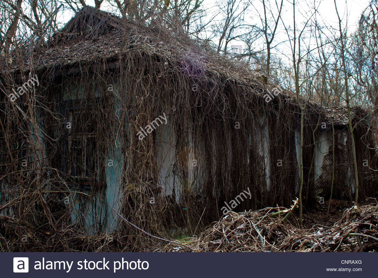 Chernobyl. Pripiat. 2012 March, Chernobyl city. March 2012 Empty houses in the city. - Stock Image