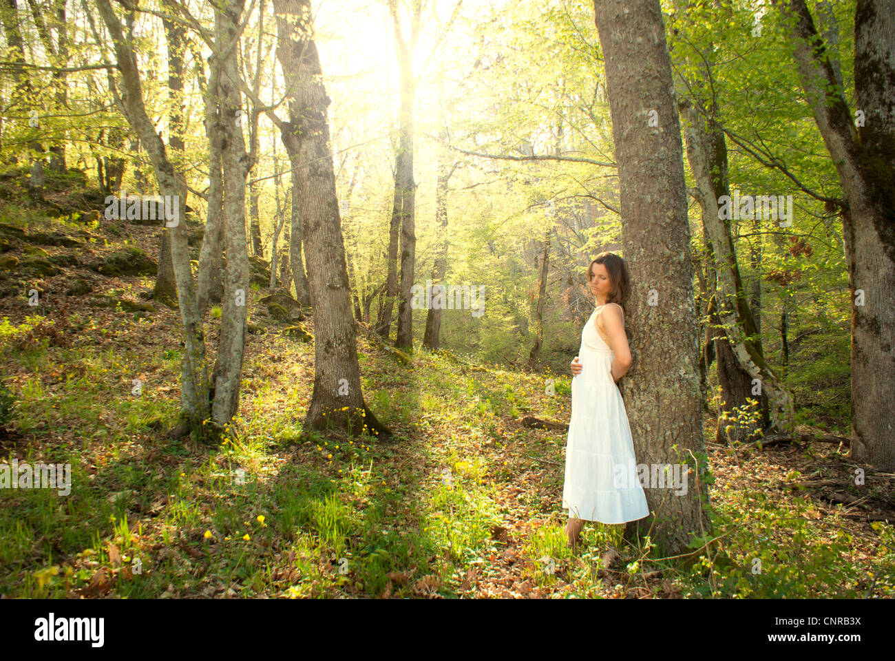 Young woman leans on a tree in a fairytale mystical forest - Stock Image