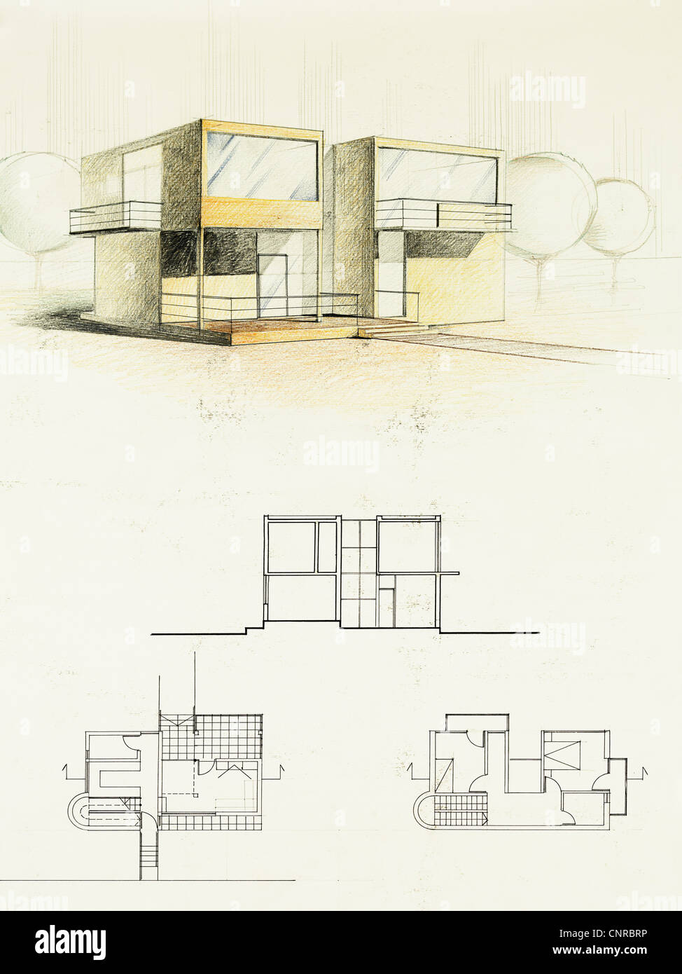 modern home architecture blueprints Colored Architectural Blueprint