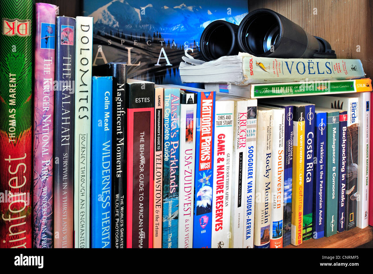 Collection showing assortment of travel guides and guidebooks about worldwide holiday destinations on a bookcase - Stock Image