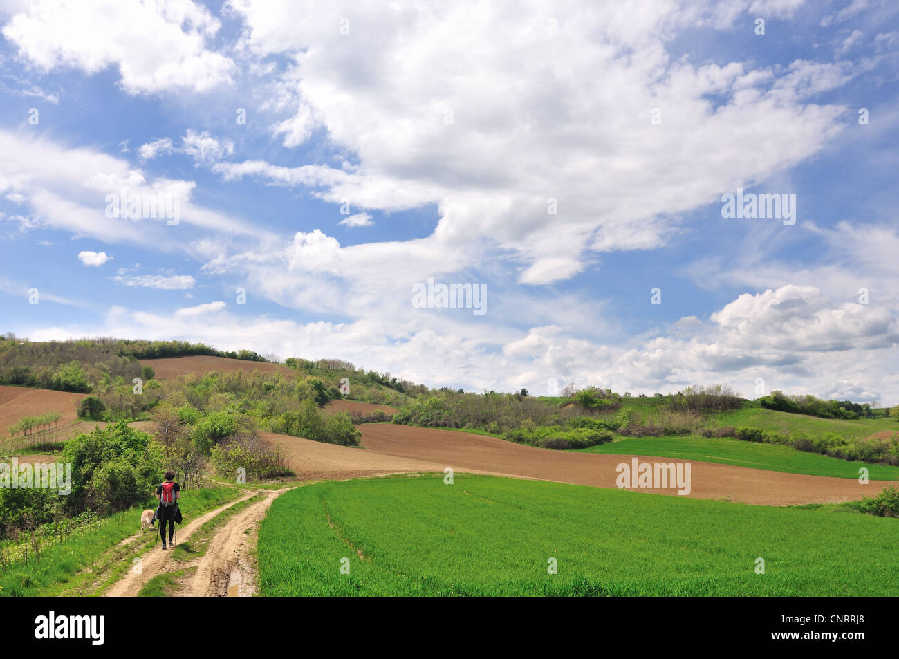 Young woman hiker with dog in countryside landscape Stock Photo