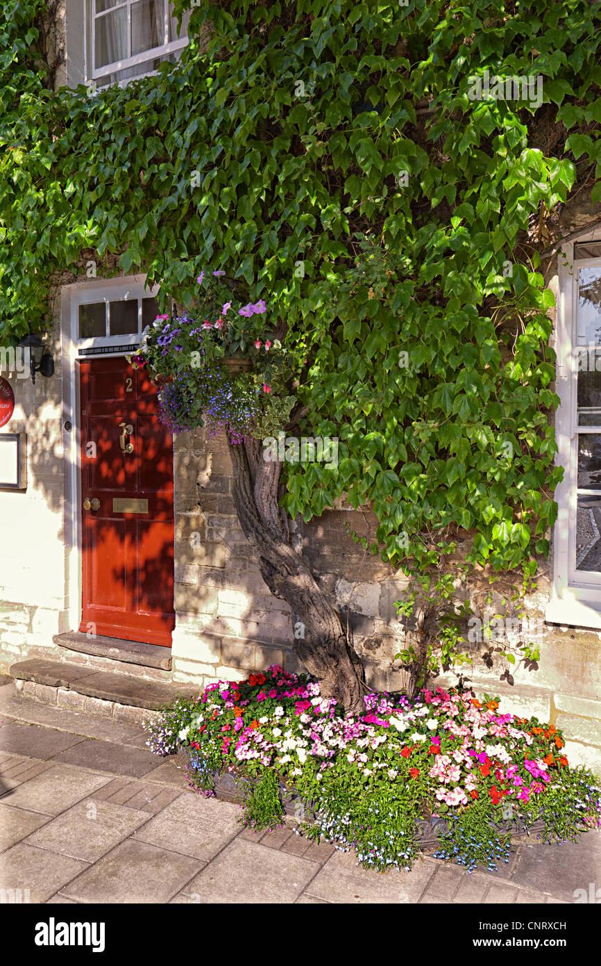 Virginia creeper and flower bed outside restaurant, Woodstock, Oxfordshire, UK - Stock Image