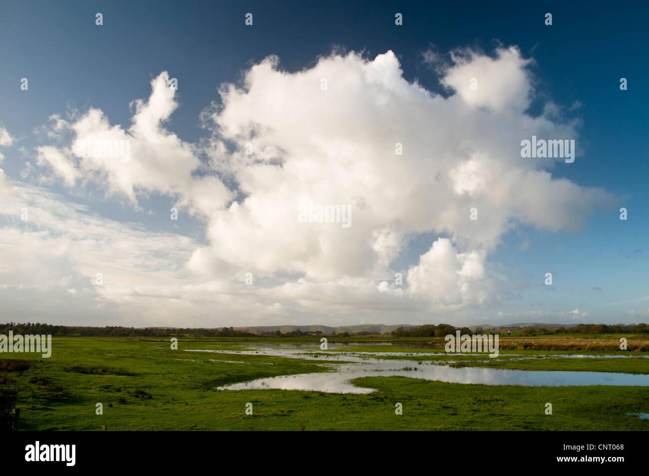 Cumulonimbus cloud formations above wetland habitat at RSPB Pulborough Brooks, West Sussex. November. Stock Photo