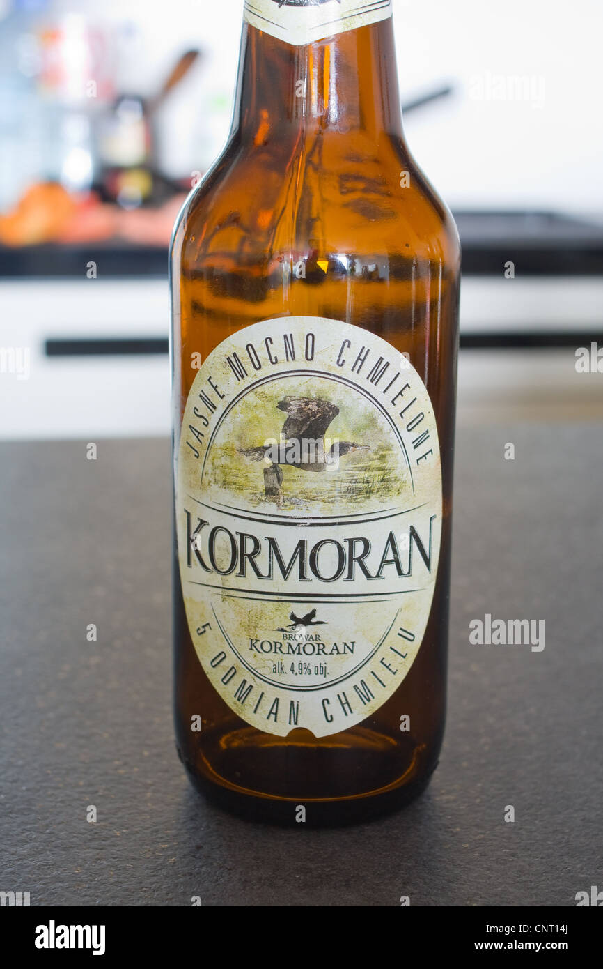 polish local beer, Kormoran - Stock Image