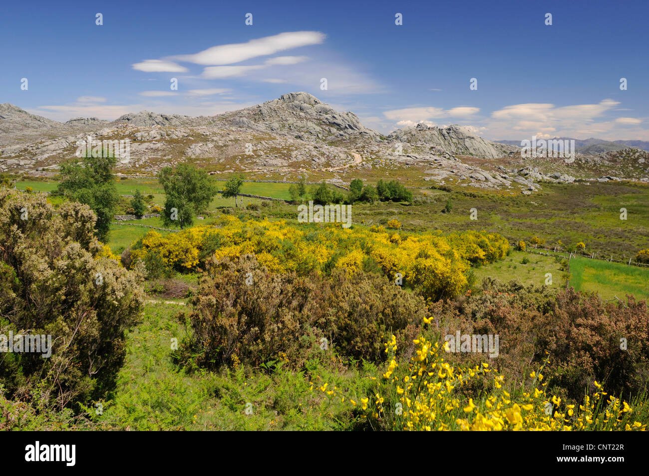 mountain landscape at the edge of Serra Geres National Park in Portugal, Portugal, Nationalpark Serra Geres - Stock Image