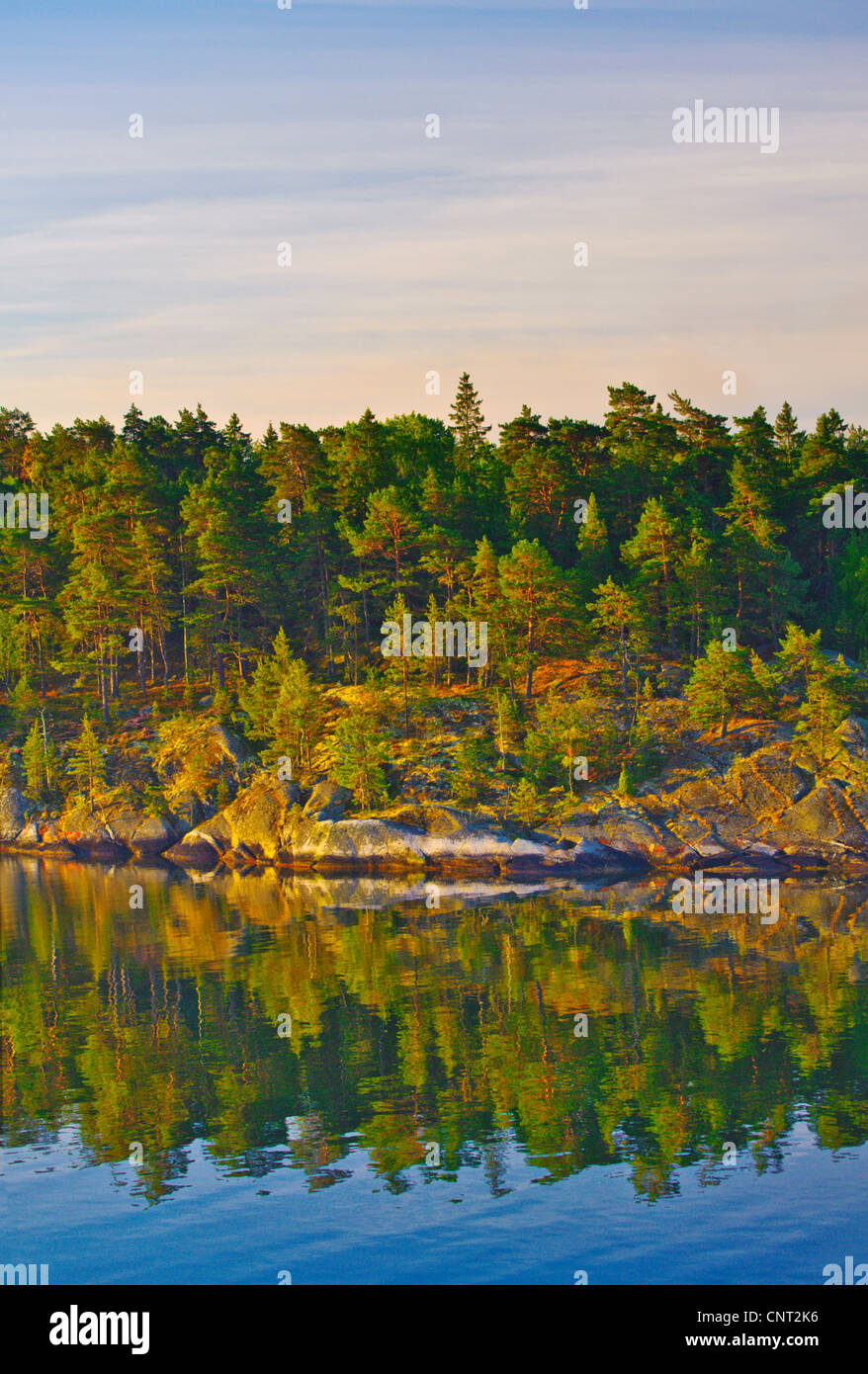 A heavily wooded island on the coast of Sweden at dawn amid the islands of the Stockholm Archipelago on the Baltic - Stock Image