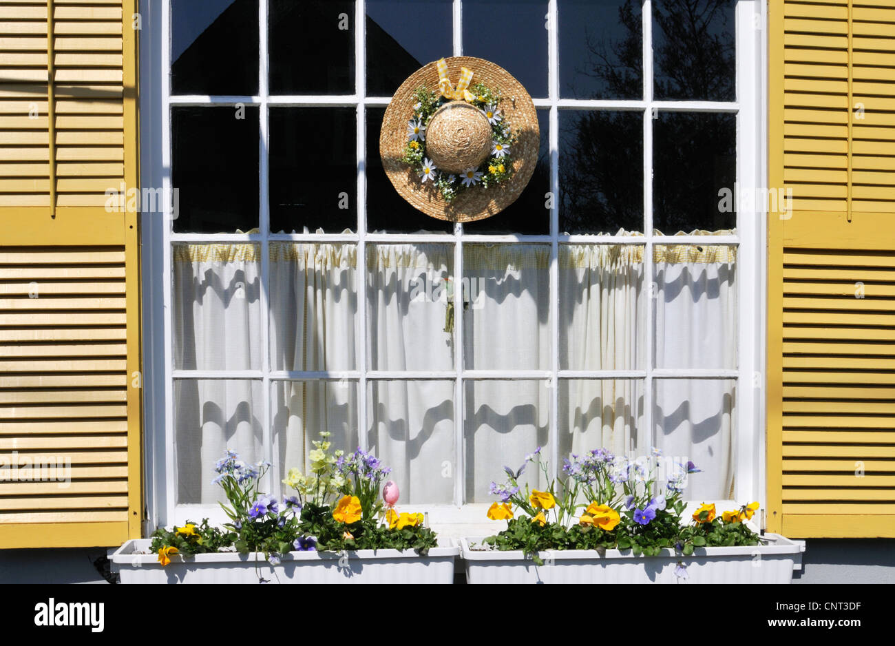 Seasonal spring window in West Falmouth, Cape Cod with window box flowers and straw hat with flowers - Stock Image