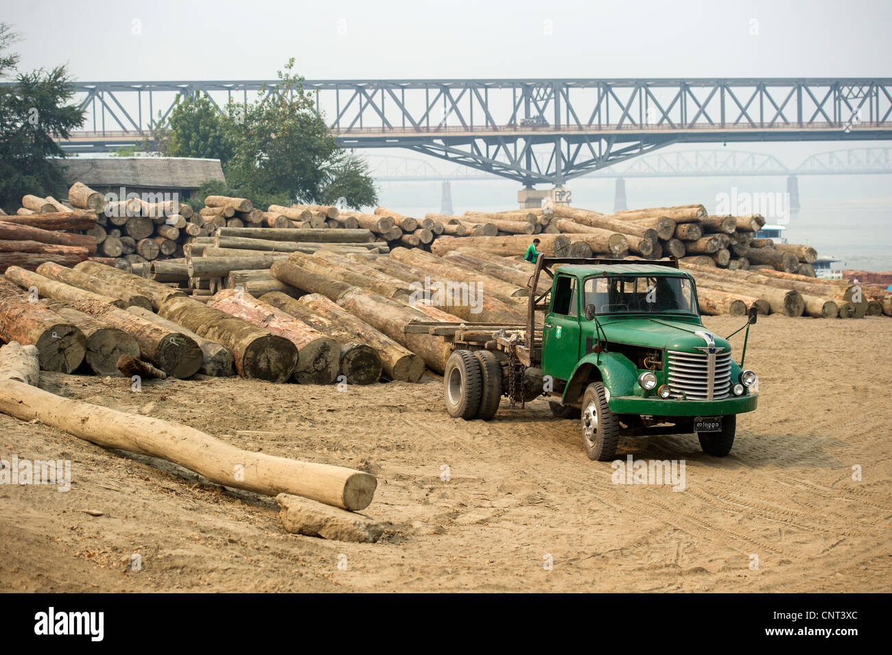 Teak Logs Stock Photos & Teak Logs Stock Images - Alamy