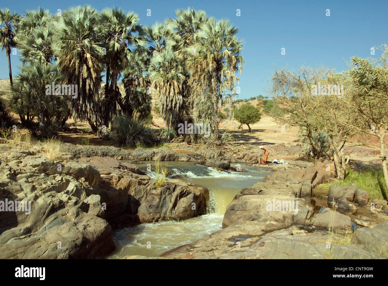 river Kunenen at the Epupa-Falls, a woman washing, Namibia - Stock Image