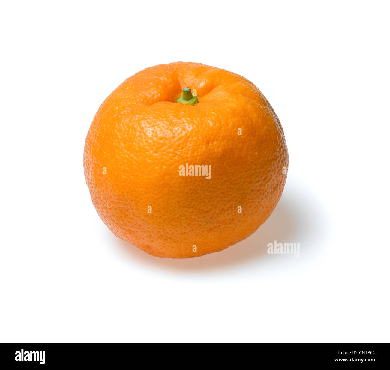 seville oranges - Stock Image