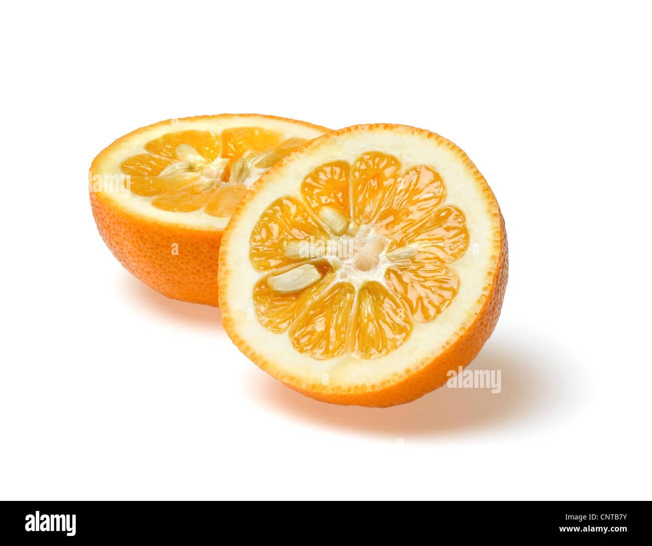 seville oranges - Stock Image