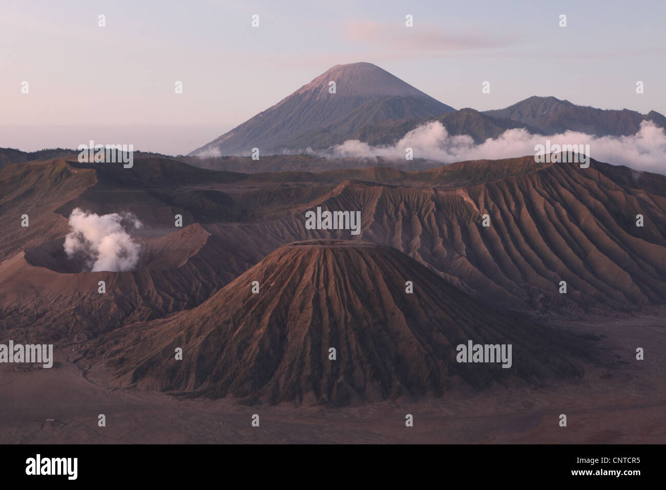 Volcanoes inside the Tengger Caldera in East Java, Indonesia. - Stock Image