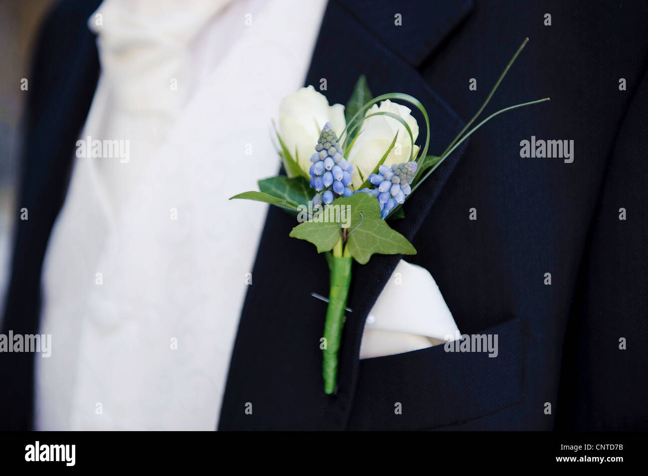 Navy And White Suit Stock Photos Navy And White Suit Stock Images