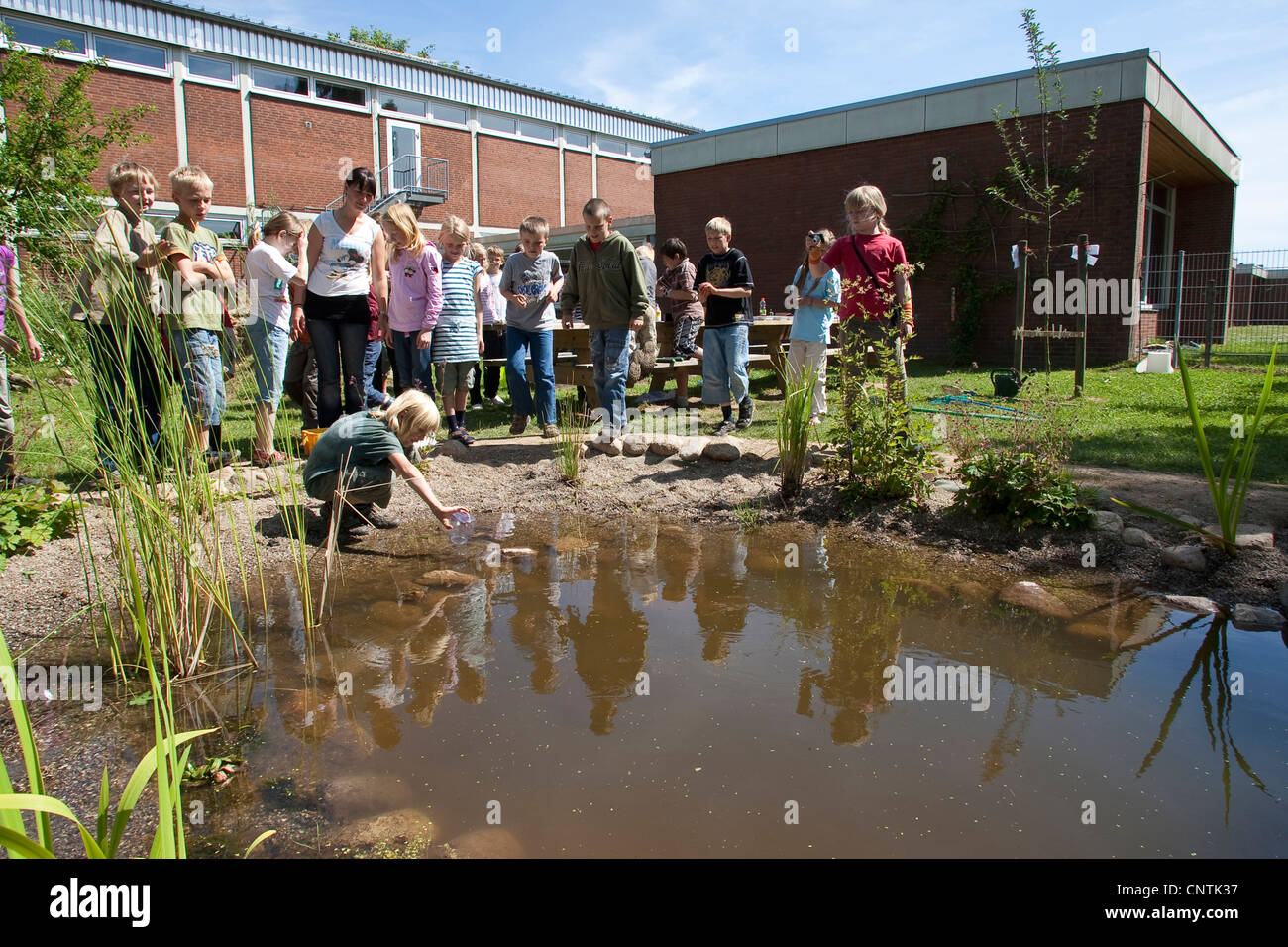 primary school pupils catching animals in the self-built pond in the school garden - Stock Image