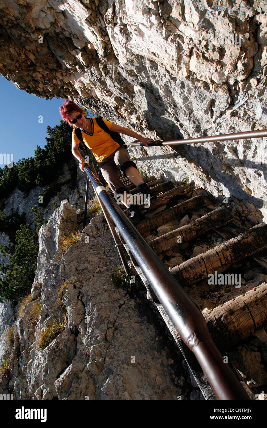 steep stair on Thomas-Eder-Steig, Untersberg, Germany, Bavaria, Berchtesgadener Land, Markt Schellenberg - Stock Image
