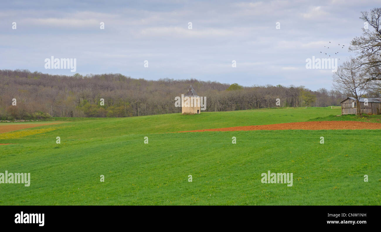 Pigeon coup in Southern France in the middle of a grain field - Stock Image