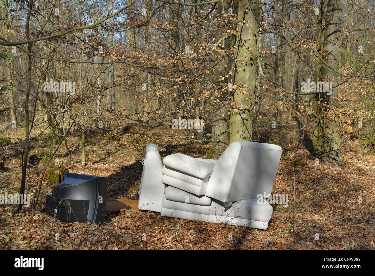 Illegal rubbish dump in the forest - a white couch and a black TV Set standing in the middle of the trees - Stock Image