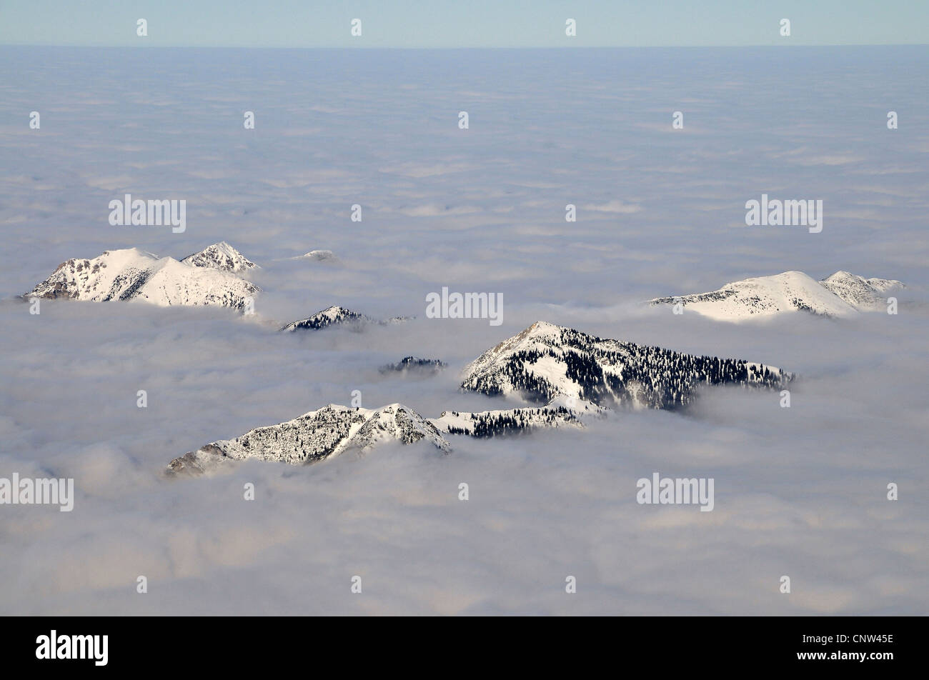 Allgaeu alps protruding out of clouds, Germany, Bavaria - Stock Image