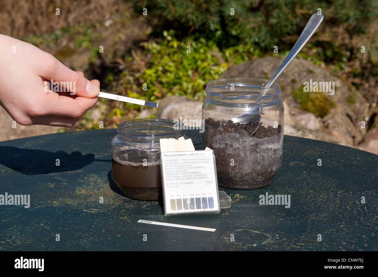 ph value of a sample of the soil ist tested with litmus paper, Germany - Stock Image