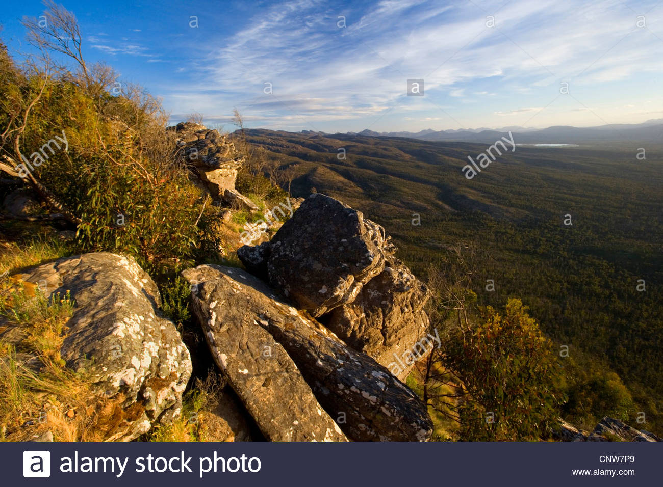 Grampian Mountains, view from Reeds Lookout towards forest-clad Victoria Valley, Australia, Victoria, Grampians - Stock Image