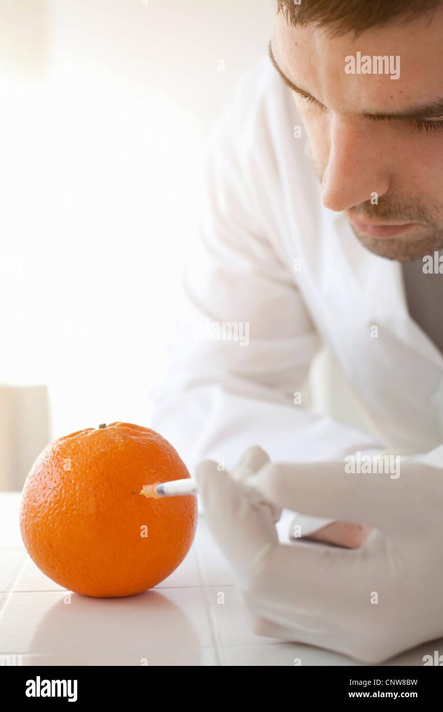 Scientist injecting liquid into orange - Stock Image