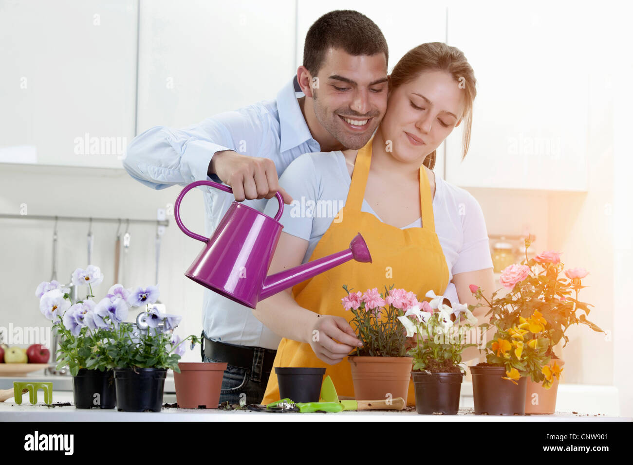 Couple watering potted plants indoors - Stock Image