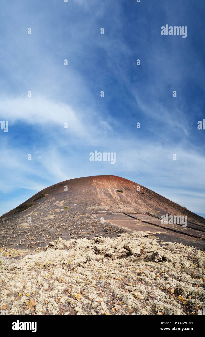 Lichen-covered pahoehoe or ropy lava, at the foot of Montana Testeyn, a volcanic cone near Masdache, Lanzarote, - Stock Image
