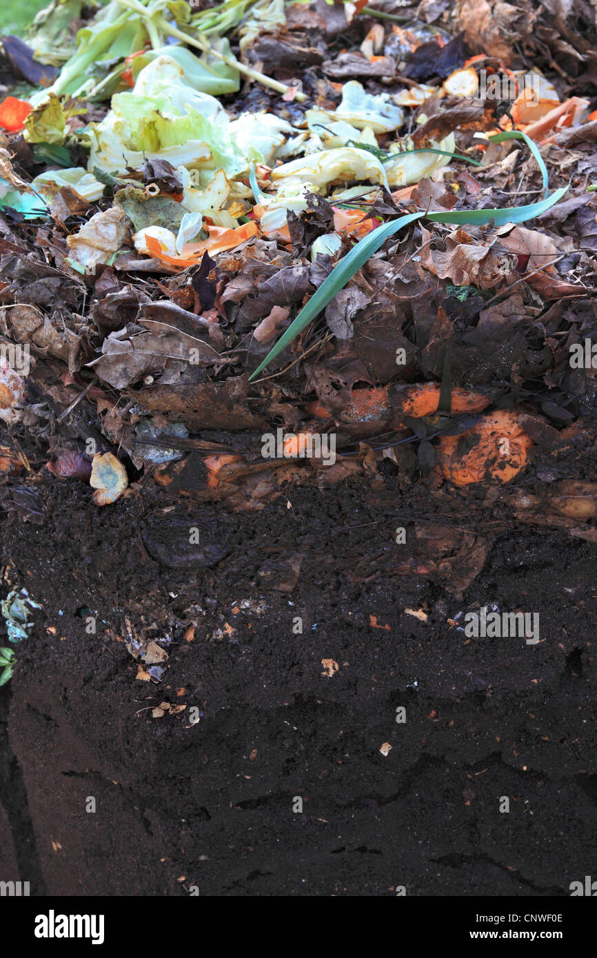 compost heap in the garden - Stock Image