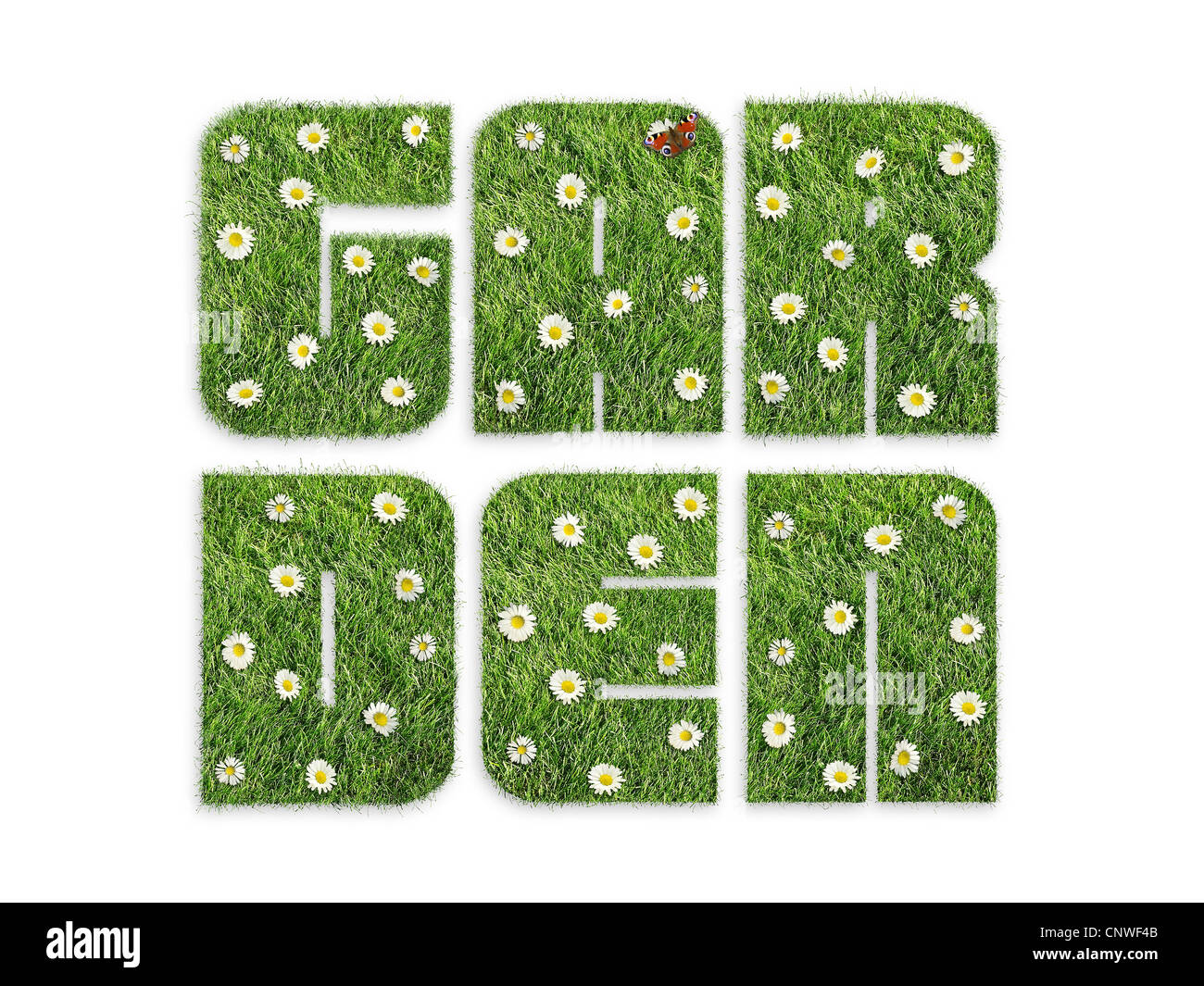 Garden word formed from grass with flowers and butterfly isolated on white - Stock Image