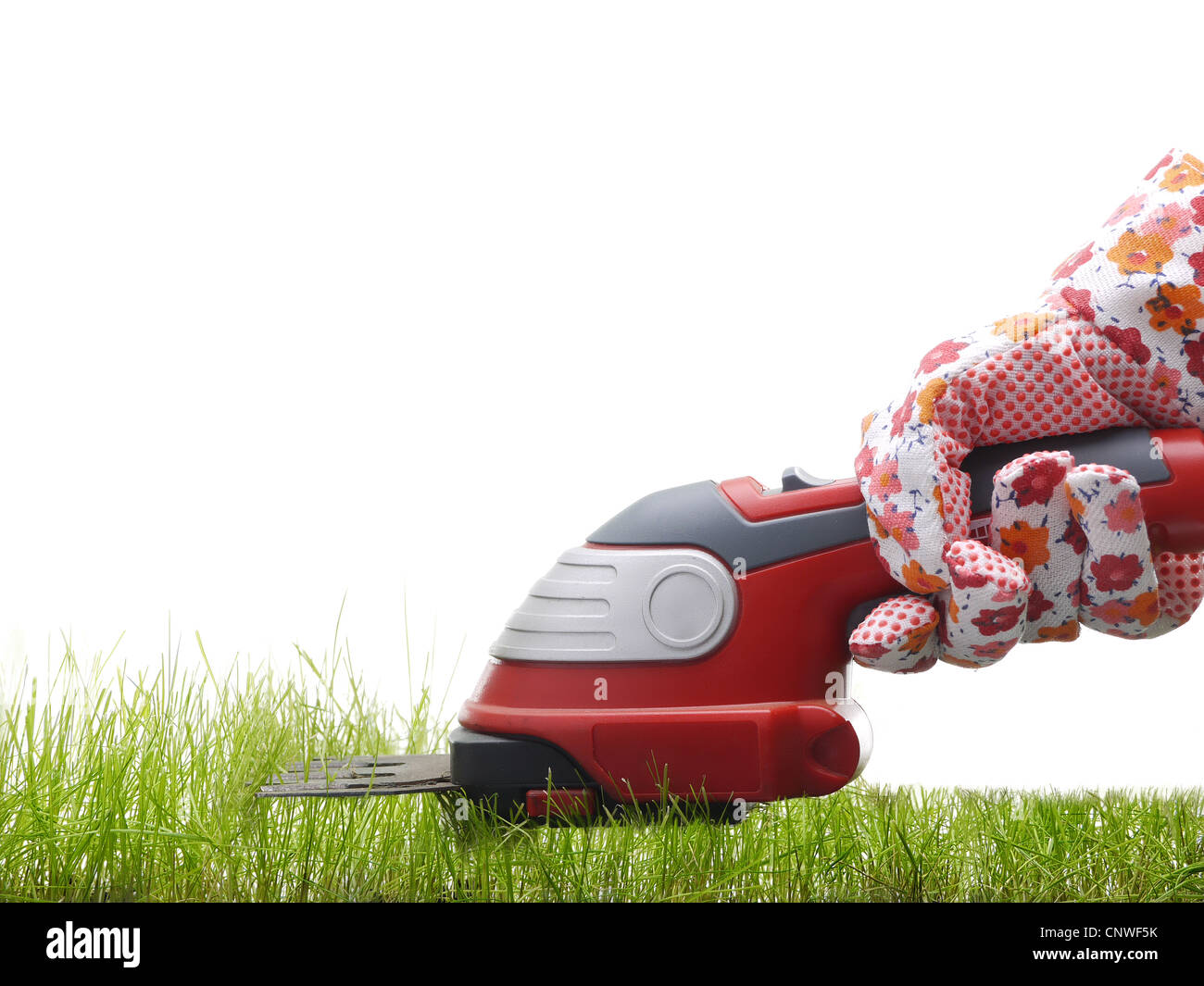 Gardener's hand in glove trimming fresh grass with trimmer - Stock Image