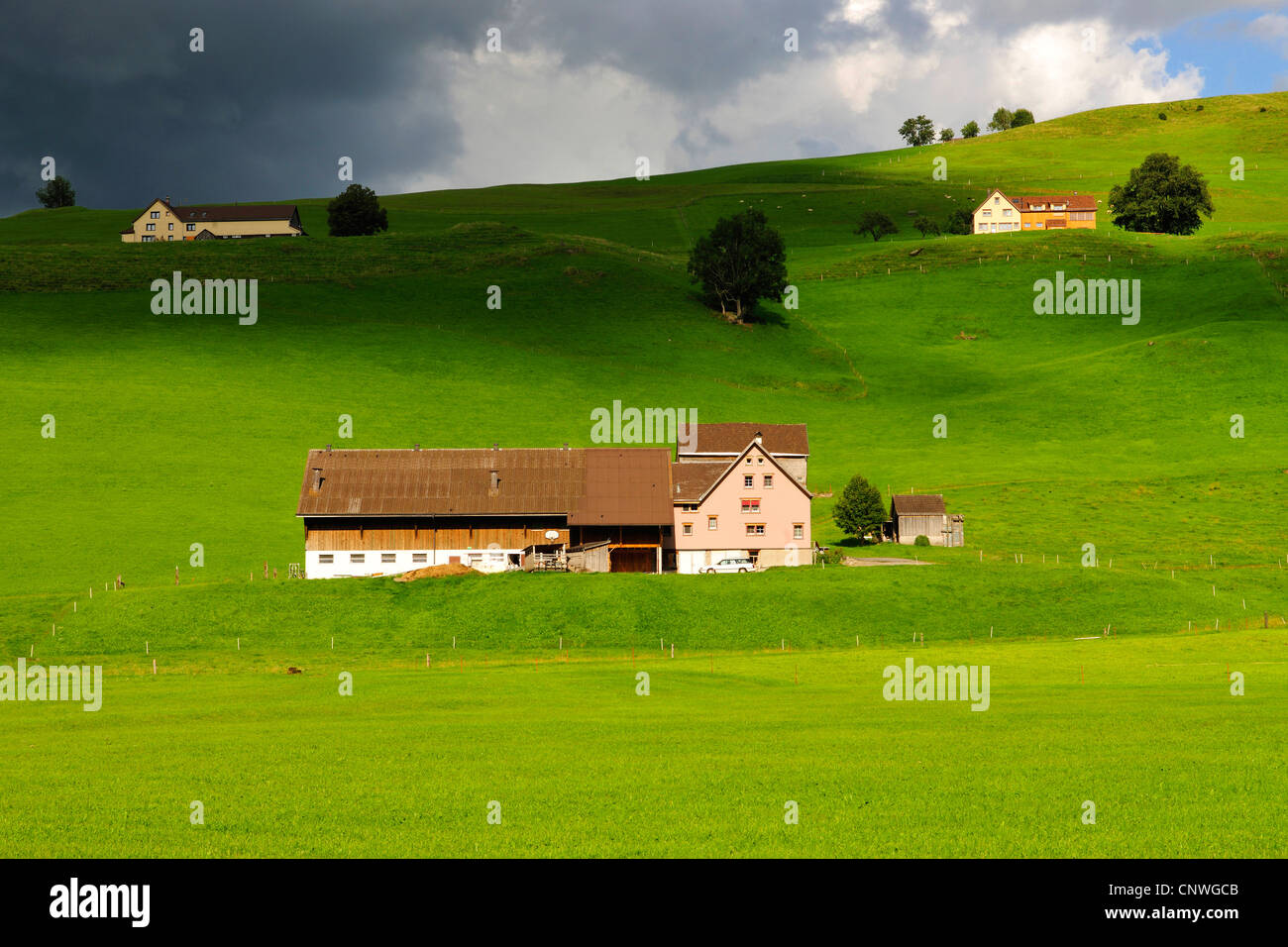 farmhouses and green pastures, Switzerland, Kanton Appenzell - Stock Image