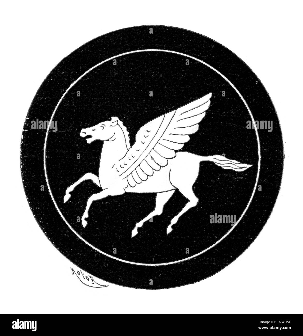 Pegasus the winged horse of ancient Greek legend - Stock Image
