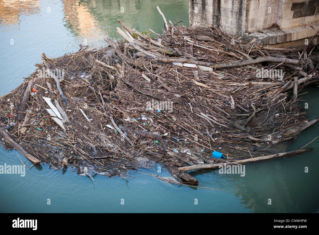 Debris floating on the river Tiber, Rome, Italy, Europe - Stock Image