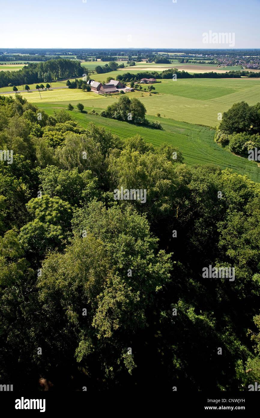 view at Sonsbecker Schweiz in Lower Rhine region, Niederrhein, Germany, North Rhine-Westphalia, Sonsbeck - Stock Image