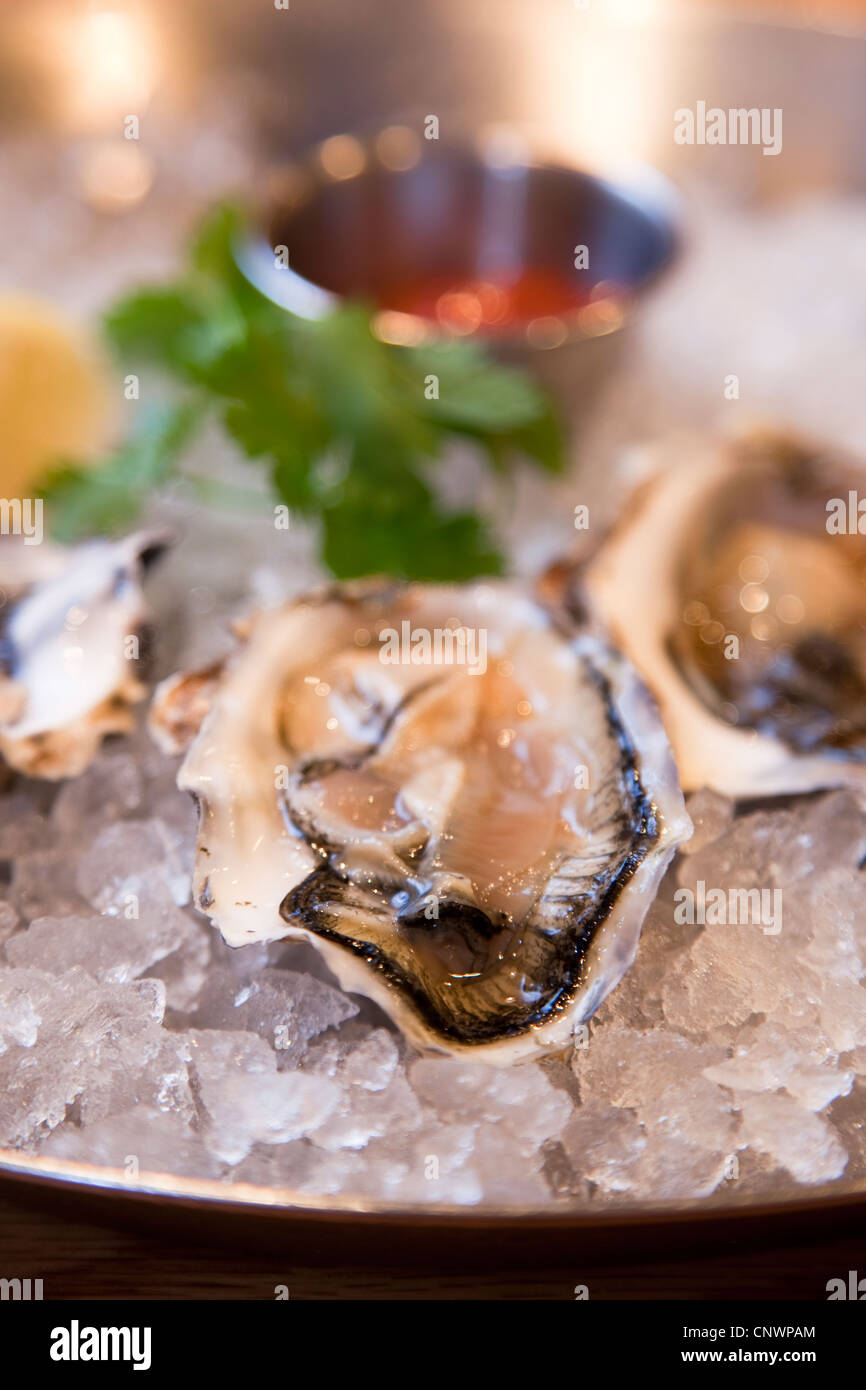 Hanks Oyster Bar at 1624 Q Street NW - Stock Image