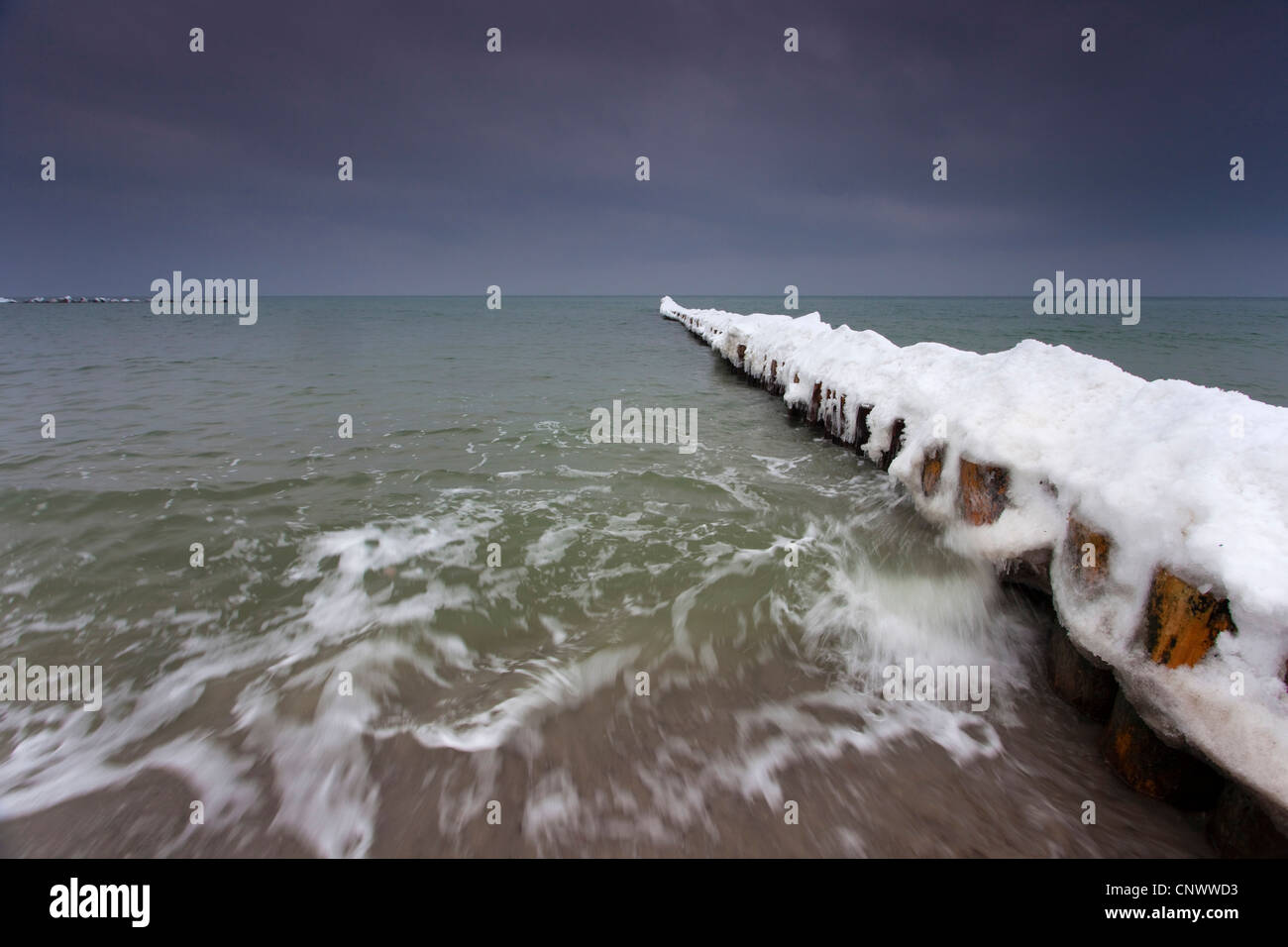 snow covered spur dike, Germany, Mecklenburg-Western Pomerania, Wustrow, Darss - Stock Image