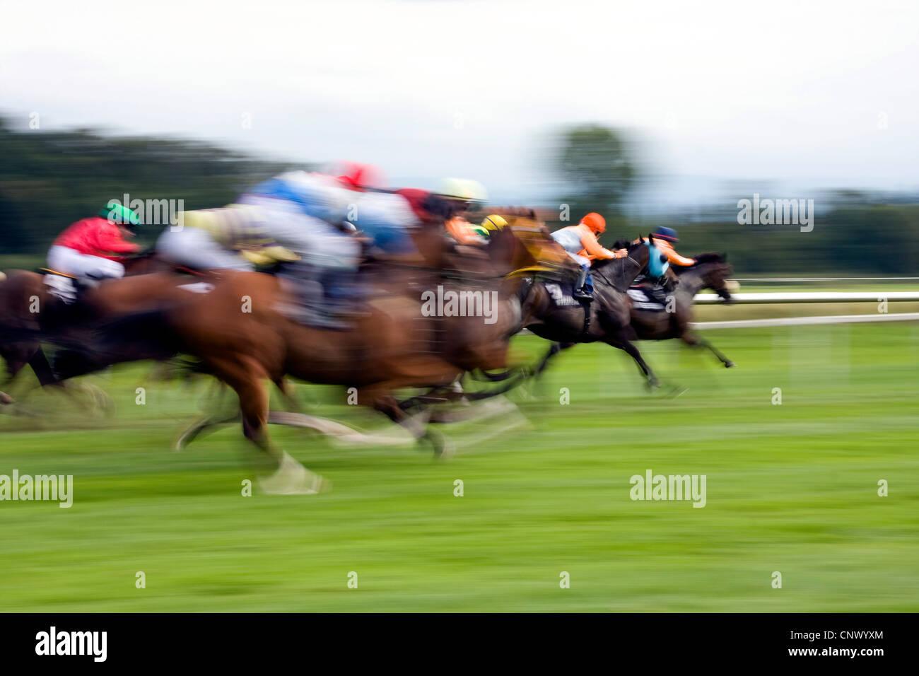 horse race, Germany, Baden-Wuerttemberg, Baden-Baden - Stock Image