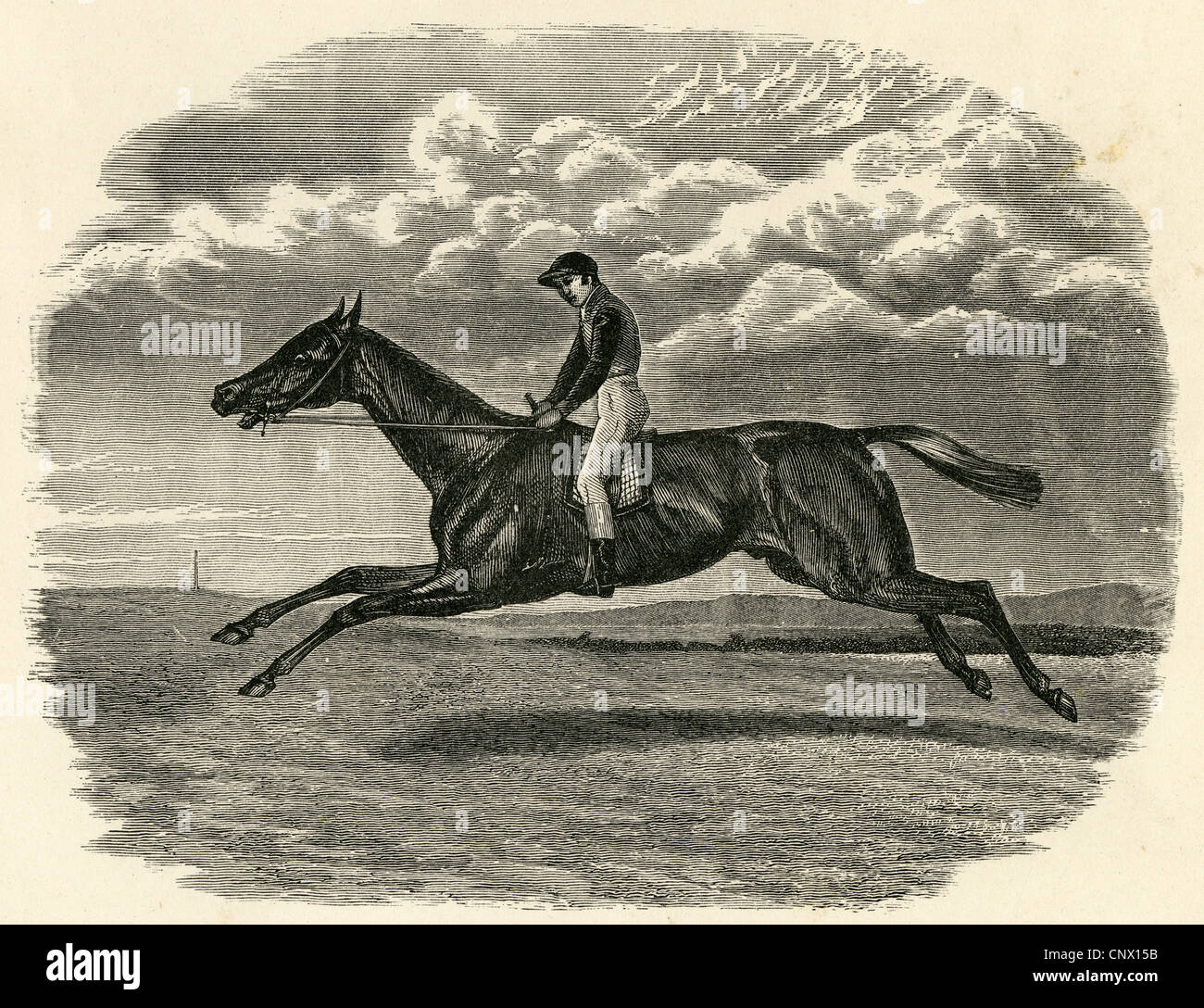 1880 engraving, Sefton, Winner of the Derby Stakes at Epsome 1878. Jockey is Henry Constable 1854-1881. - Stock Image