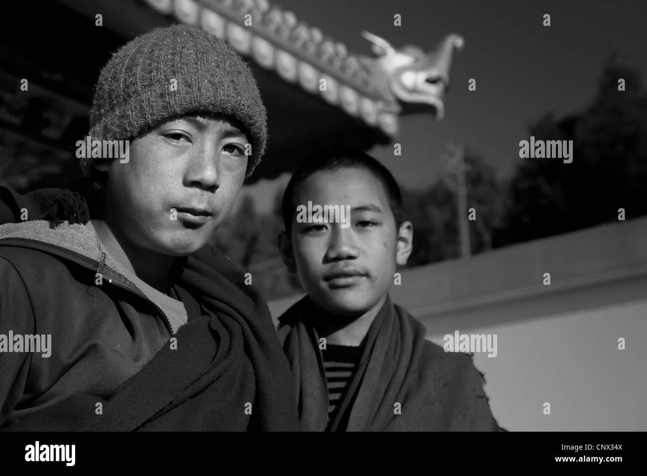 Young monks in front of a monastery in Bomdila, Arunachal Pradesh, India - Stock Image