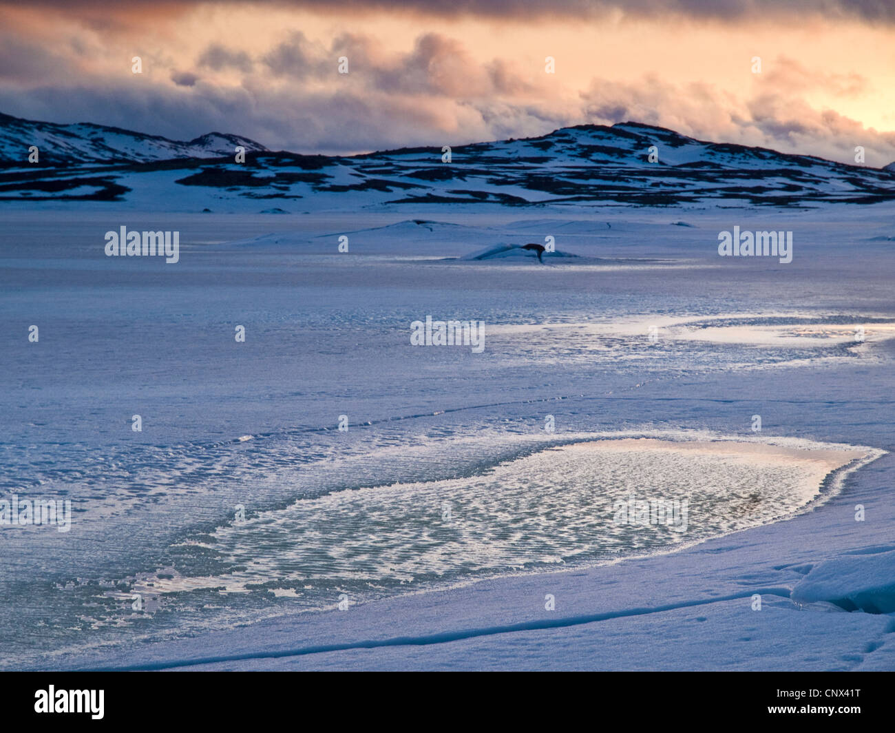 Cold winter evening on the Hardanger plateau in the  Norwegian mountains - Stock Image