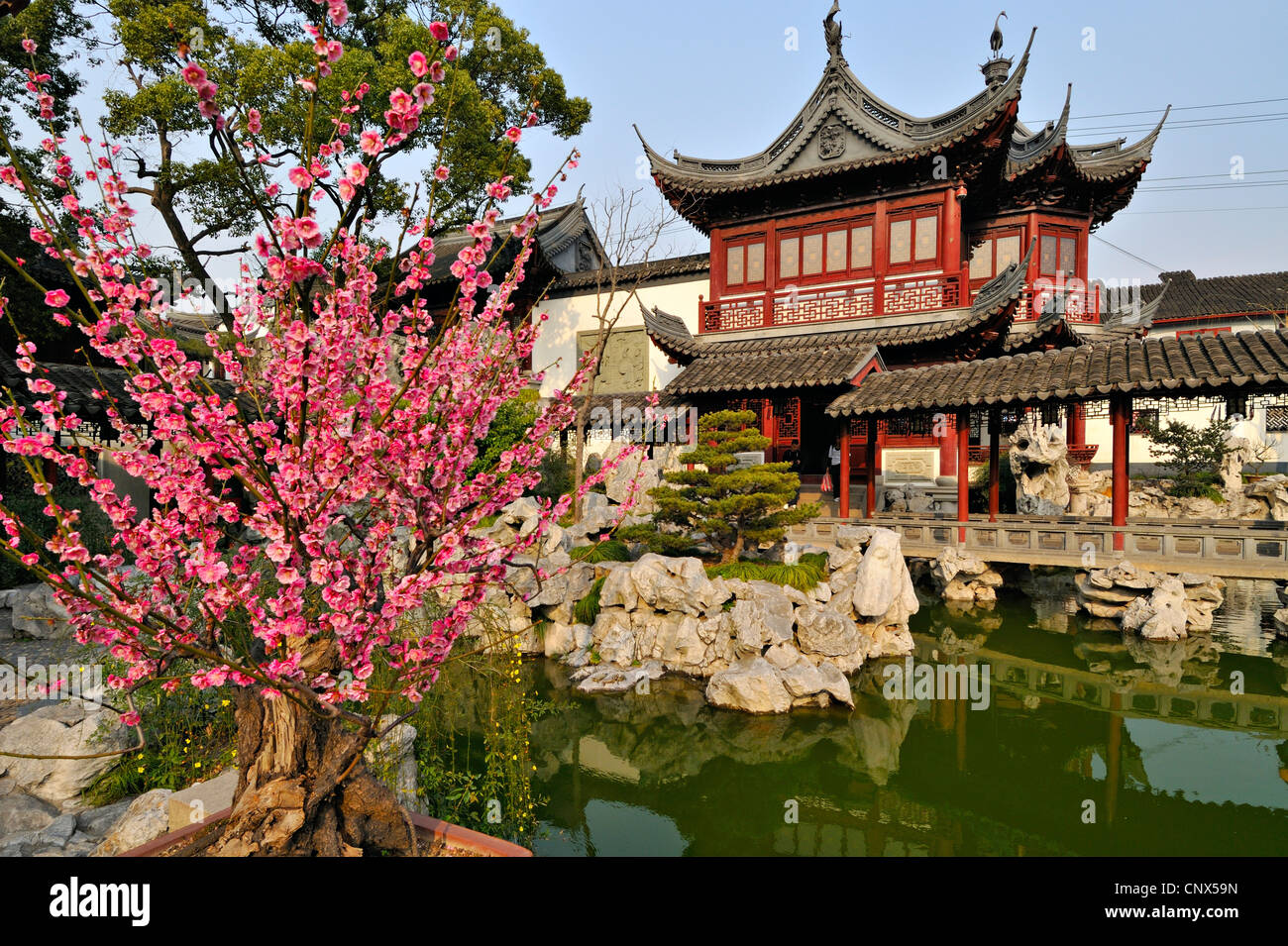 Traditional Chinese gardens and red pavillion at Yu Yuan ...