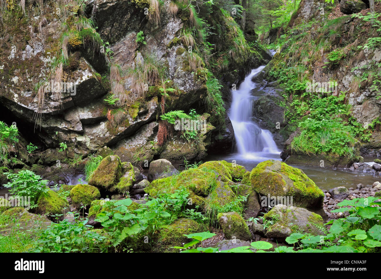 waterfall in the Hoellental gorge, Germany, Baden-Wuerttemberg, Black Forest Stock Photo