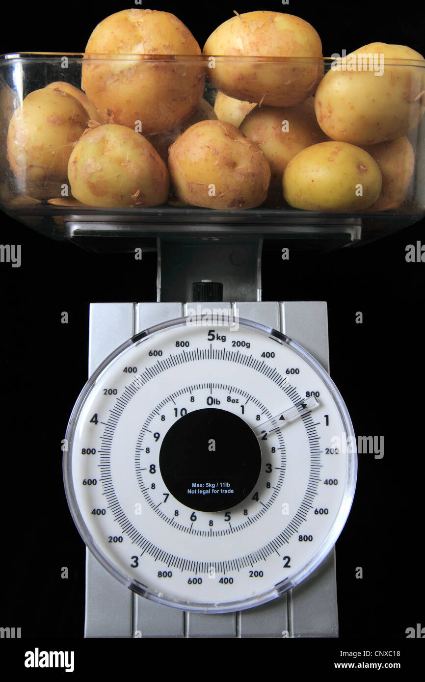 Weighing potatoes on Scales, measured in Kilograms & Pounds - Stock Image